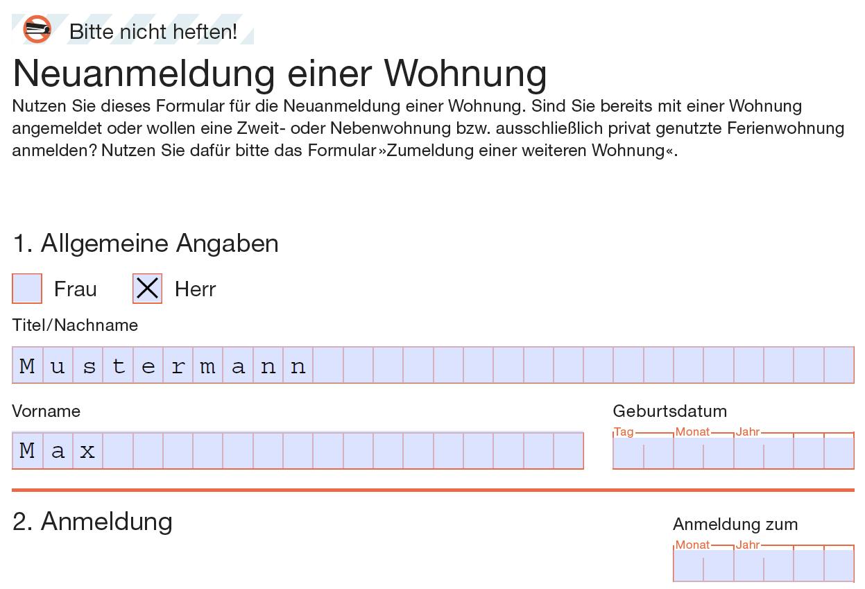 Screenshot eines PDF-Formulars